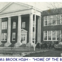 TOMS BROOK SCHOOL.pdf